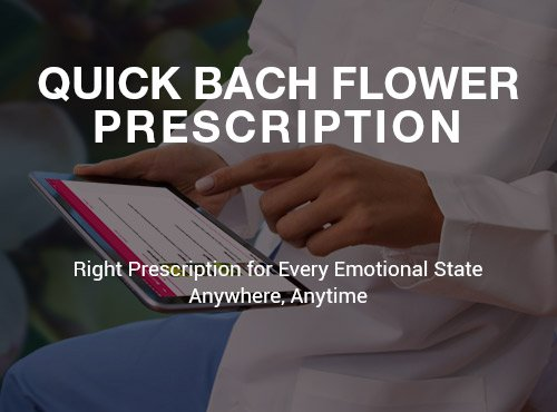 Bach-Flower-prescriber